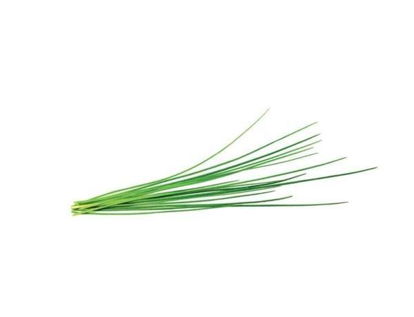 Salātu zaļumi