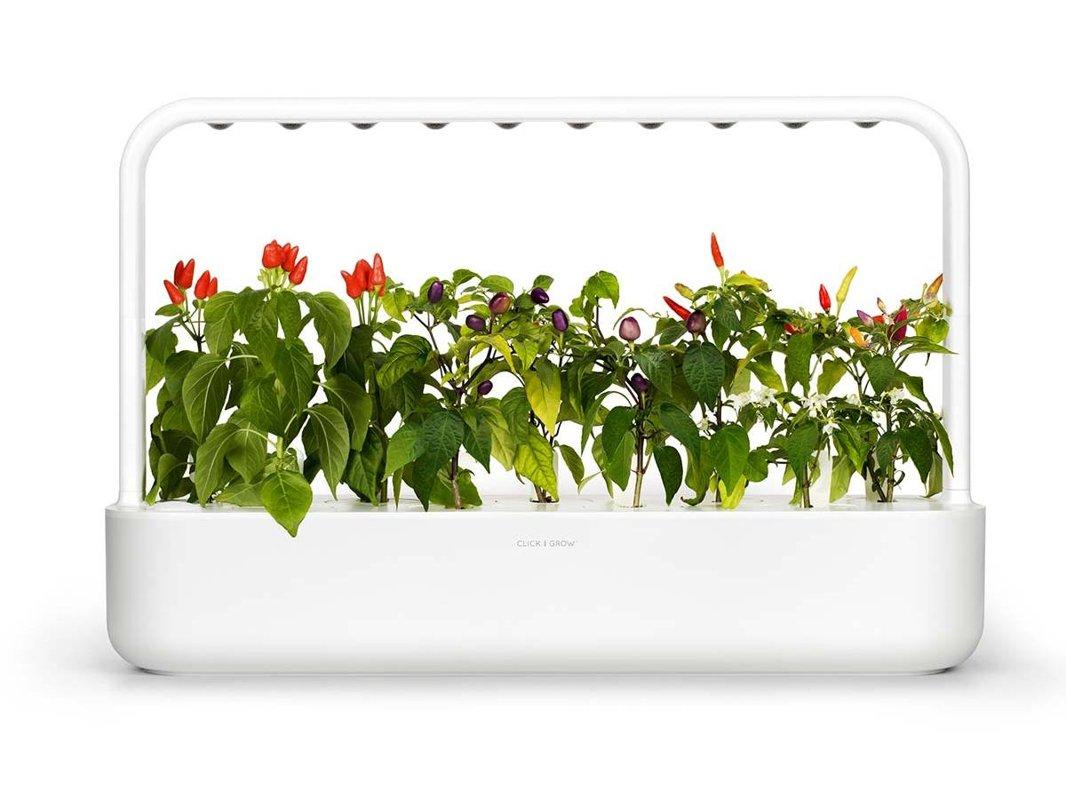 Smart Garden-9