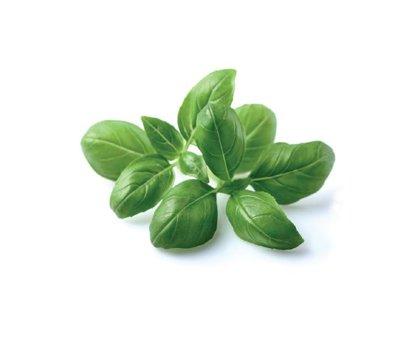 Seasonings and Herbs